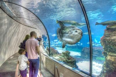 L'Aquarium, Barcelona - JA029089 (HDR)